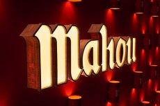 画像5: スペインビール mahou マオウ・シンコ・エストレージャス(330ml×24本セット) (5)