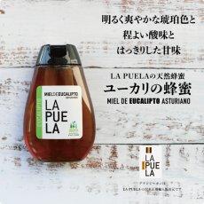 画像2: ユーカリの蜂蜜 (2)