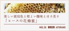 画像4: ヒースの花の蜂蜜 (4)