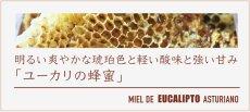 画像4: ユーカリの蜂蜜 (4)